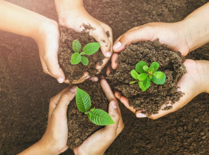 Los gobiernos de México, EU y Canadá han establecido un marco para la modernización en material ambiental. Foto: iStock